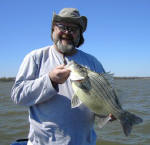 World Record Hybrid Yellow Bass