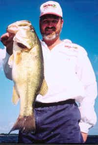 lake fork bass