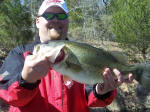 Daniel Gross was fishing with Pro Guide Larry Womack and his dad when he caught this deceit fish, his dad lost a Hog. Actually, lost 2 monster fish one just never stopped went around a tree and the line broke, the other just lost it.