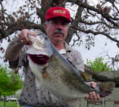 Robert Beato, an Albuquerque, New Mexico angler caught a 13.66 pound largemouth