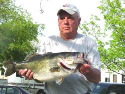 13.2 largemouth bass