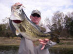 Tommy Duke from Wichita Falls with a 7 pound fish caught with Pro Guide John Tanner on 3/13 and you guessed it he was using a white Mutant by www.grandebass.com.