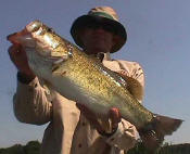 Tommy Duke from Wichita Falls with a 7.8  bass caught while fishing with Pro Guide John Tanner.